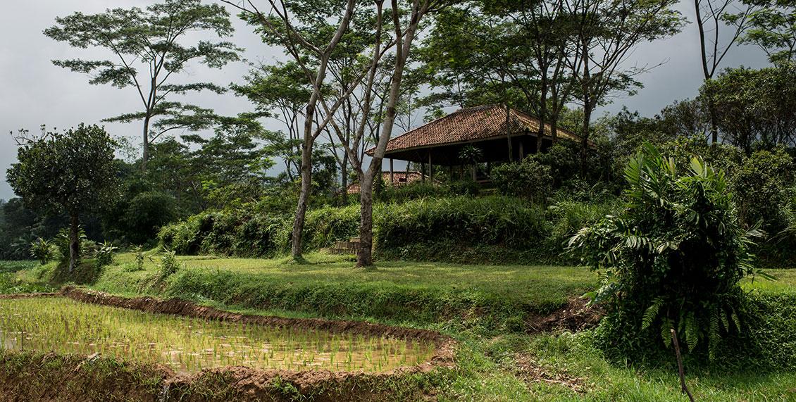 Acacia-Camp